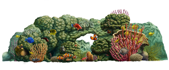 Coral Reef - Click to Return to Gallery